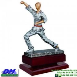 Trofeo Karate 5625 karateca premio diferentes alturas pallart tamaños chapa grabada