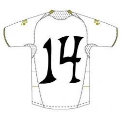 Estampar Numero especial en Camiseta