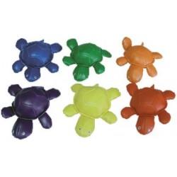 tortugas SET softee